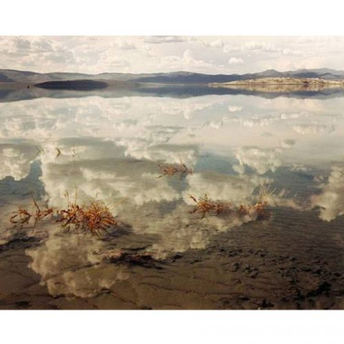 Artist I Love: Richard Misrach