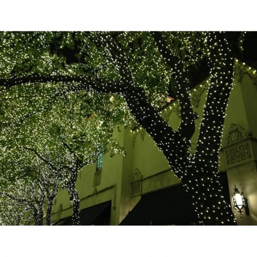 Deck the Boughs: Holiday Lights in Highland Park